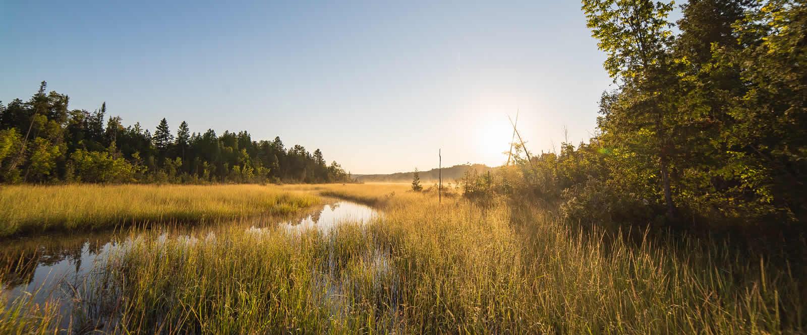 pond into limerick lake